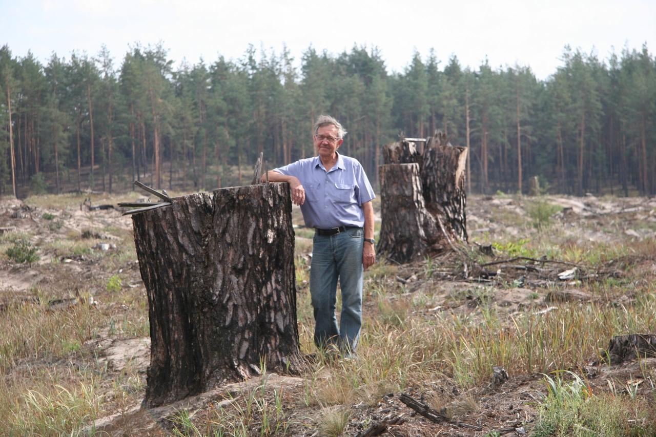 Рубки леса  в Украине:  практика, теория, проблемы (тезисы)