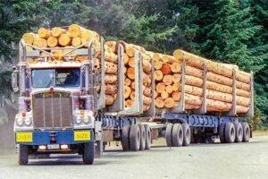 Рост цен на круглые лесоматериалы в Китае нивелирован увеличением стоимости доставки. Экспортный спрос на пиломатериалы остается устойчивым. Внутренний спрос хороший, но ожидается его замедление