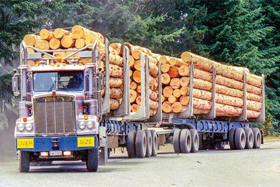 Read more about the article Рост цен на круглые лесоматериалы в Китае нивелирован увеличением стоимости доставки. Экспортный спрос на пиломатериалы остается устойчивым. Внутренний спрос хороший, но ожидается его замедление