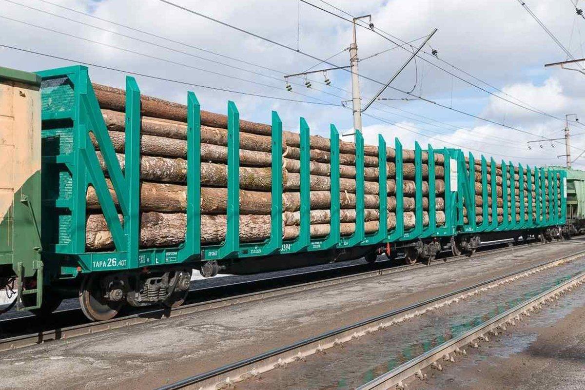 You are currently viewing Российский рынок ж/д перевозок лесных грузов в 1-м полугодии 2020 года