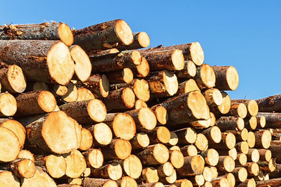 Цены на круглый лес падают по всей Швеции