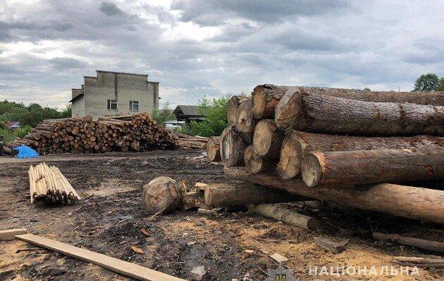 Завтра состоятся слушания Арбитражной группы в споре с ЕС по экспорту леса-кругляка
