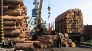 ЕС требует от Украины отменить мораторий на вывоз древесины