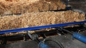 Предотвратить ввоз радиоактивной древесины призваны более жесткие требования