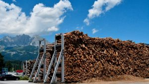 Egger: Благодаря короедам и COVID-19 древесина подешевела