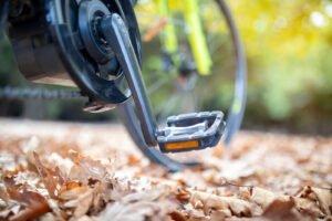 Древесина все больше используется в электронике — аккумуляторные батареи становятся более экологичными, благодаря компонентам на основе древесины