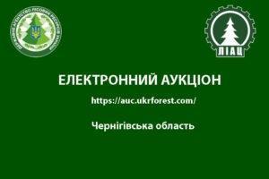 Электронный аукцион по реализации круглых лесоматериалов хвойных пород по Черниговской области
