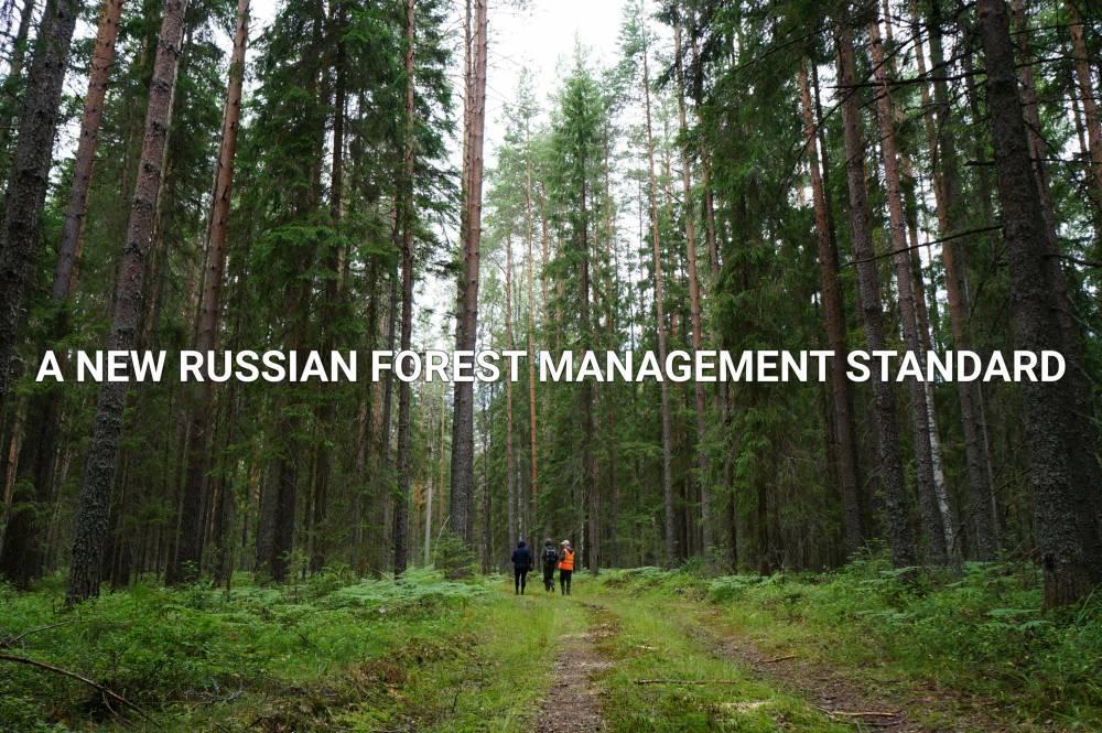 РФ: Новый национальный стандарт FSC по лесоуправлению официально опубликован