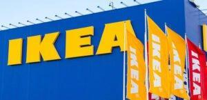 Отголоски отчета Earthsight: швейцарский фонд жалуется на  Ikea