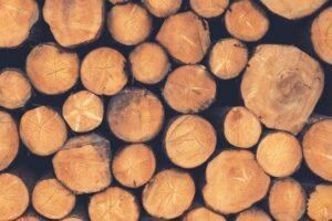 Почему в ближайшие годы древесина станет популярной?