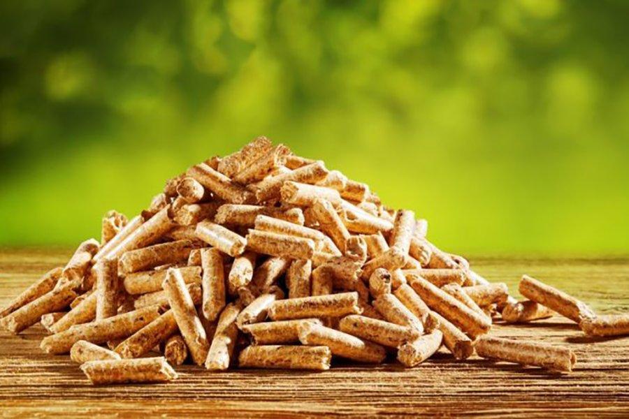 CIRI инвестирует в предприятие по производству топлива из древесной биомассы