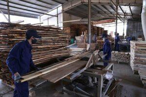 Экспорт древесины Бинь Динь вырос на 21%, несмотря на пандемию