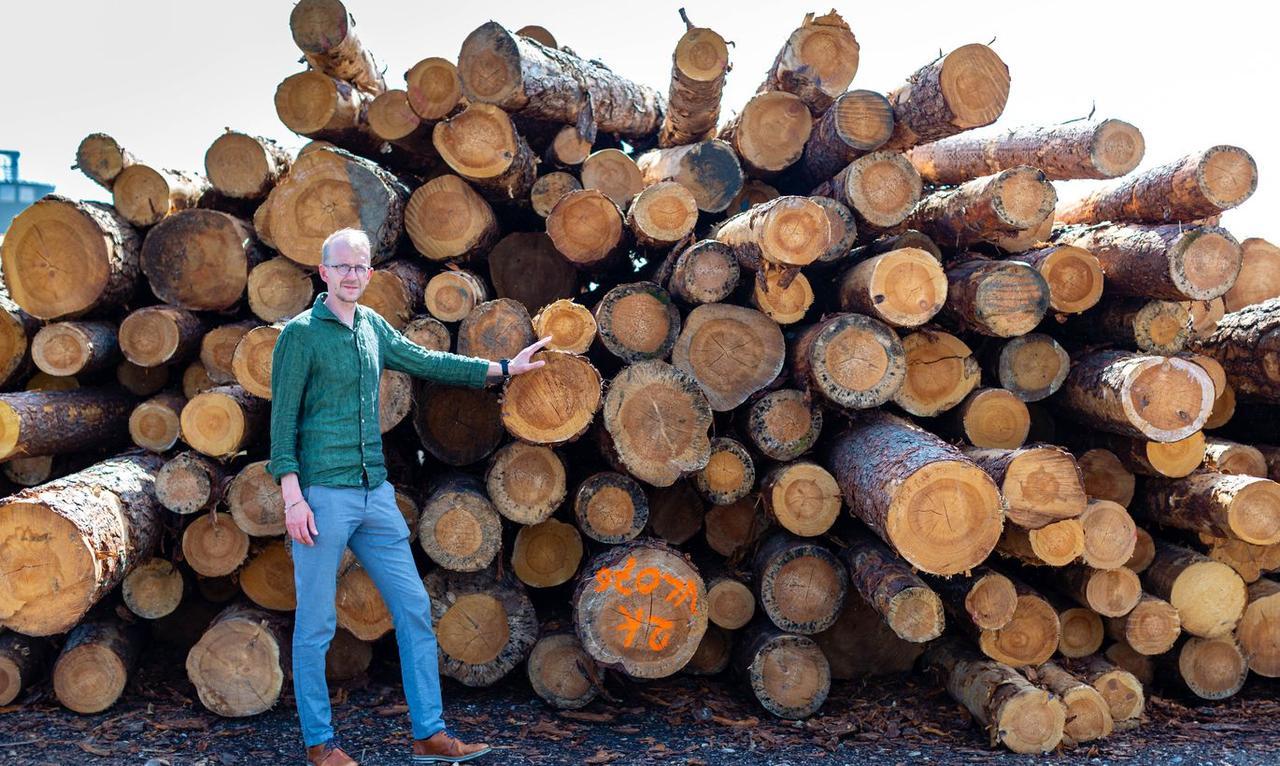 You are currently viewing Одно из крупнейших деревообрабатывающих предприятий Эстонии выходит на белорусский рынок