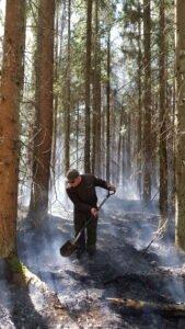 Литва: сезон лесных пожаров закончился успешно. Инновации себя оправдали
