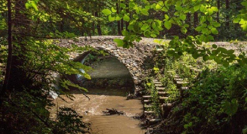 Новые водопропускные трубы в лесах на ручьях и малых речках, — подарок  для водных животных.
