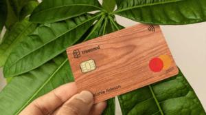 Ecosia інвестувала більше мільйона доларів у дерев'яні платіжні картки