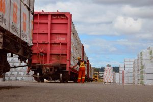 В третьем квартале экспорт пиломатериалов из Канады в США вырос на 17%