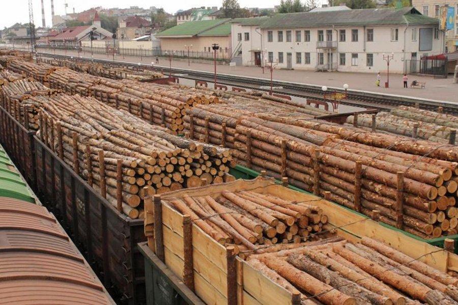 Российский экспорт круглого леса продолжает снижаться