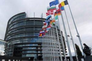 Парламент ЕС утвердил отчет о будущей лесной стратегии