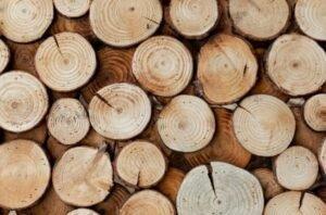 БУТБ: Сумма экспортных сделок по лесоматериалам составила 3,3 млн USD за 9 месяцев 2020 г.