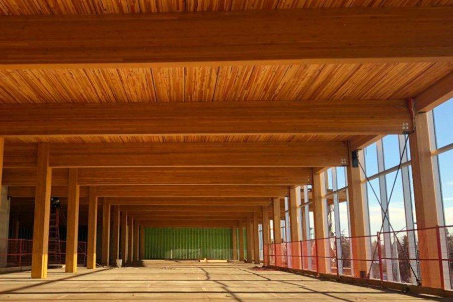 Мичиган построит новое государственное здание за 5 миллионов долларов из массивной древесины