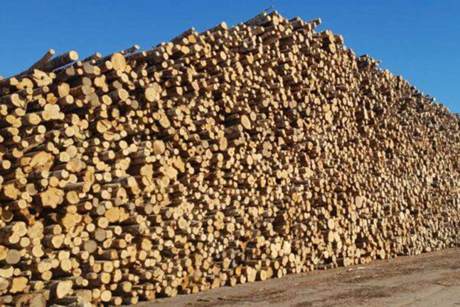 Экспорт древесины и бревен из России в январе-августе 2020 года: экспорт древесной целлюлозы увеличился
