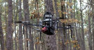 Автономные роботы Treeswift обеспечивают оценку и мониторинг лесов
