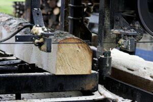 В России запустят льготное кредитование переработки древесины