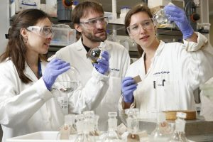 Read more about the article Новый захватывающий способ производства биомассы расширяется