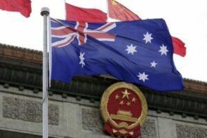 Китай запрещает импорт австралийской древесины после обнаружения вредителей