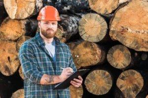 Затраты на строительство растут, поскольку лесная промышленность предупреждает о непоправимом ущербе из-за нехватки древесины