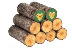Спрос на круглый лес в Беларуси превышает предложение
