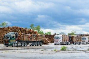 Bundesforste впервые тестирует бесконтактную логистику древесины