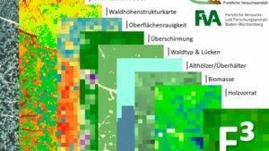 Проект F3: от аэрофотоснимка к карте запасов древесины