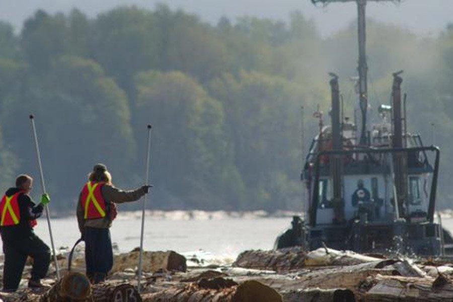 Канадская компания Interfor объявила об огромных продажах пиломатериалов