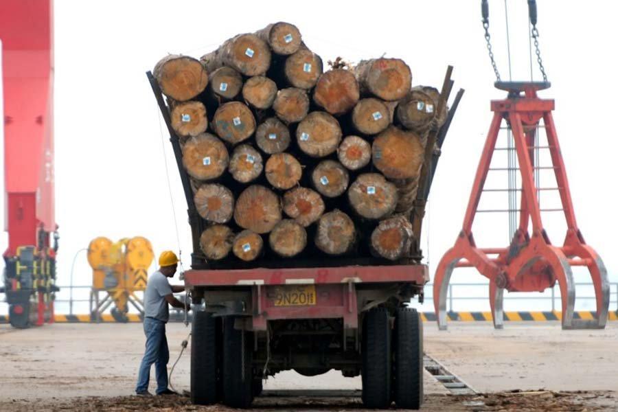 Китай блокирует импорт австралийской древесины из-за расширения торгового спора