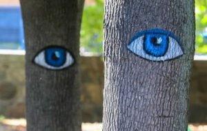М. Попков: О бюджетной поддержке государственного лесного хозяйства Украины