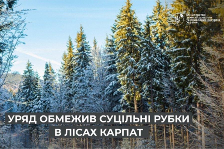 You are currently viewing Правительство ограничило сплошные рубки в лесах Карпат