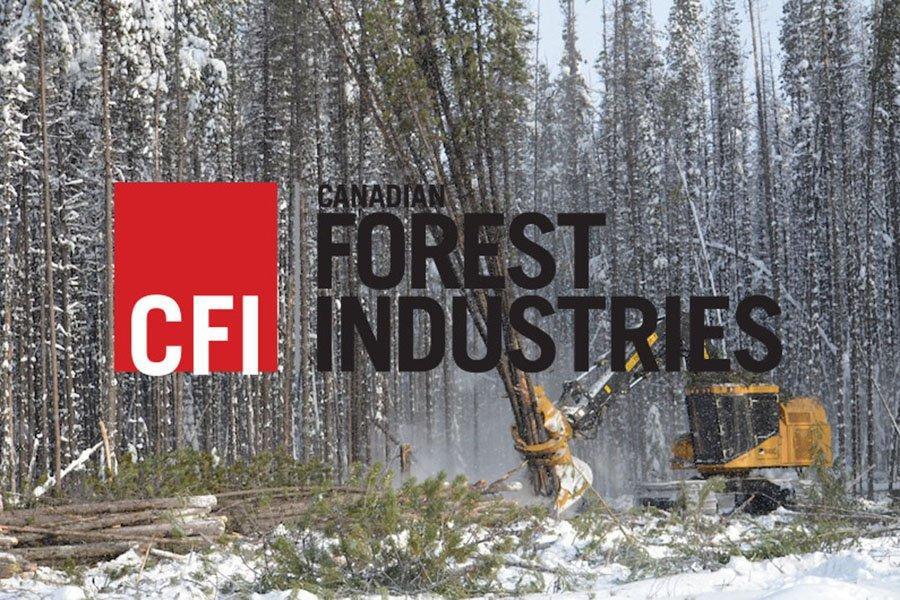 10 главных статей о канадской лесной промышленности 2020 года