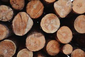Украина начала импортировать лес-кругляк из Евросоюза