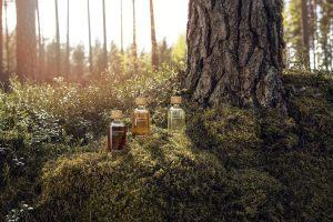 Sodra разработала линейку биопродуктов под торговой маркой Liquid Forest