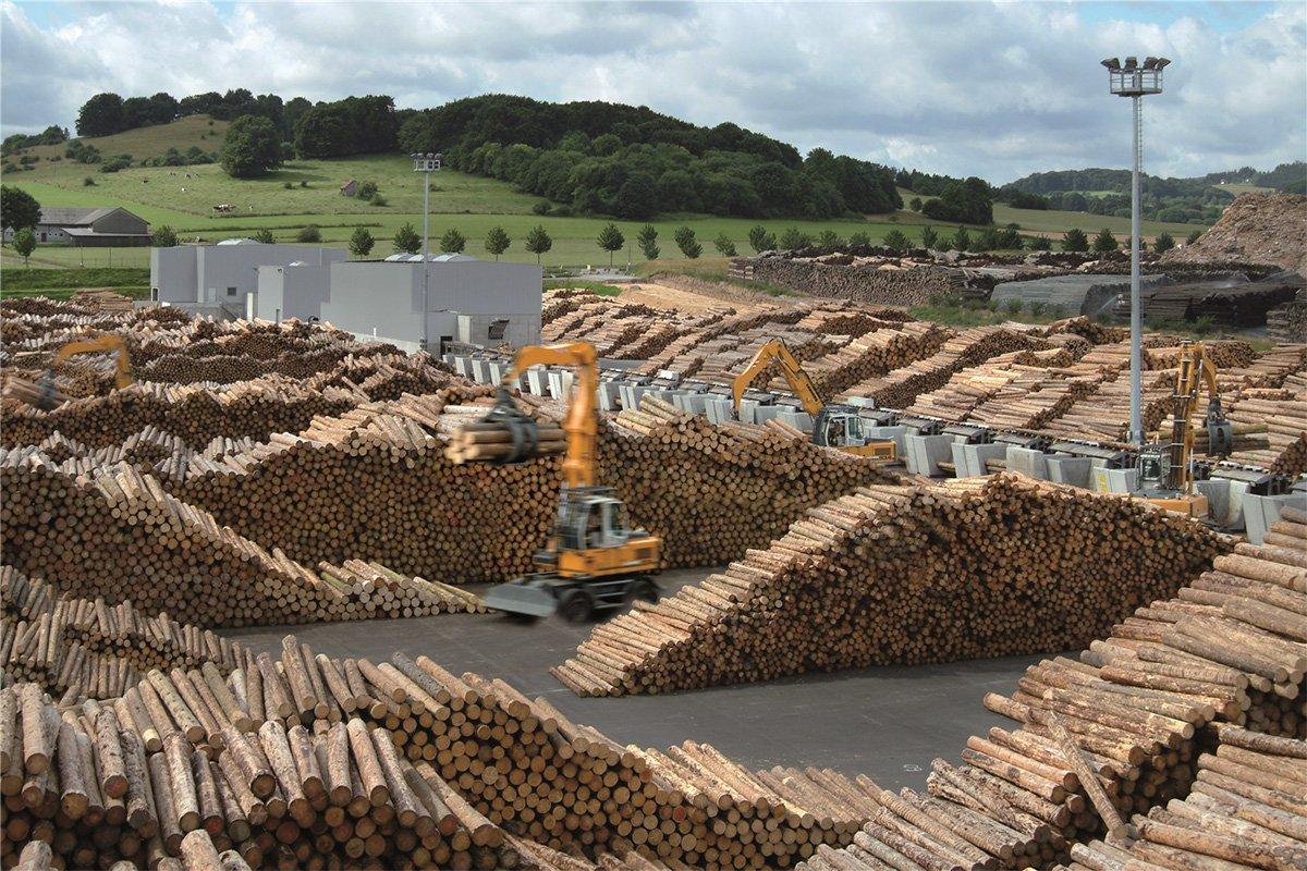 Германия: спрос на свежую древесину на обычном сезонном уровне