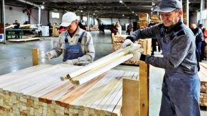 Деревообработчики записали обращение по развитию деревообрабатывающей промышленности Украины