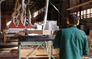 Read more about the article Лесным сектором в Эстонии создано почти 60 000 рабочих мест