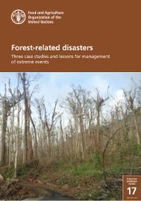 ФАО публикует новое исследование стихийных бедствий, связанных с лесами