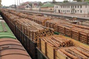 Экспорт круглого леса из России снова вырос в третьем квартале 2020 года