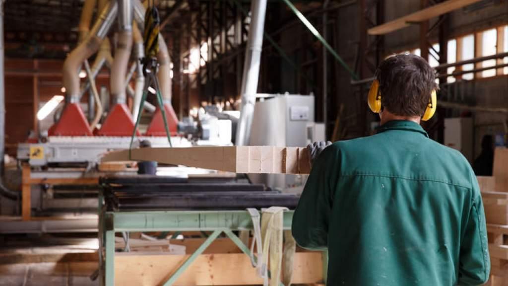 Лесным сектором в Эстонии создано почти 60 000 рабочих мест
