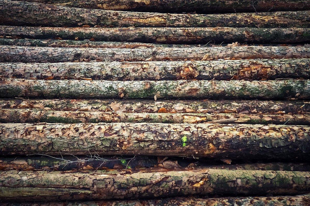 Внешняя торговля круглым лесом Финляндии сократилась в 2020 году
