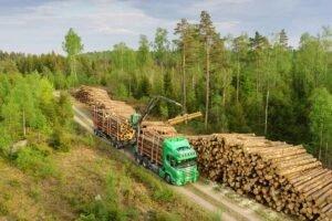 Цены на пиловочник хвойных пород в Норвегии продолжают расти