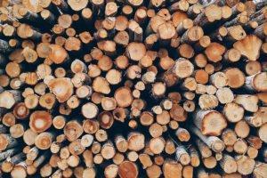 В Финляндии на 15 процентов сократилась торговля круглым лесом
